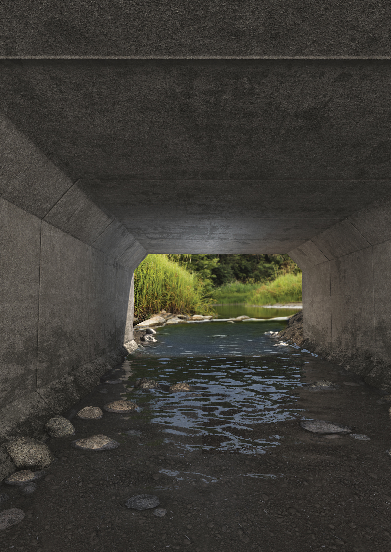 Box & 3-Sided Culverts - NPCA